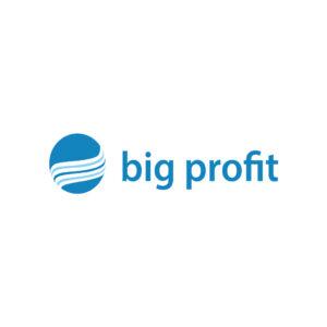 hasle-big-profit-logo